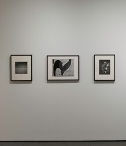 Installation view of Black, White & Abstract: Callahan, Siskind, White at the Baltimore Museum of Art, May 2017. Photo by Mitro Hood.