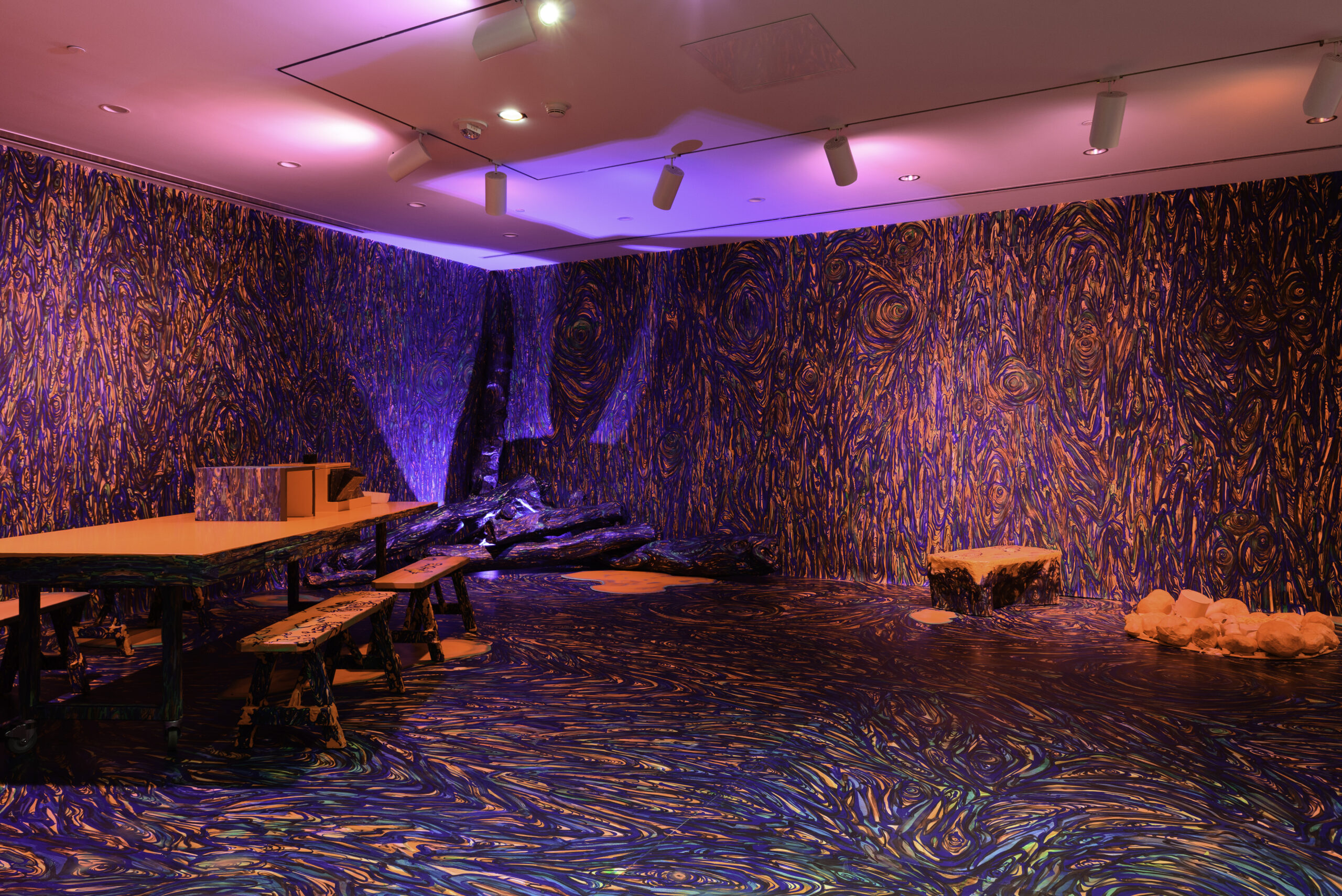 Installation view of Phaan Howng: Succession of Nature. Photo of Mitro Hood.