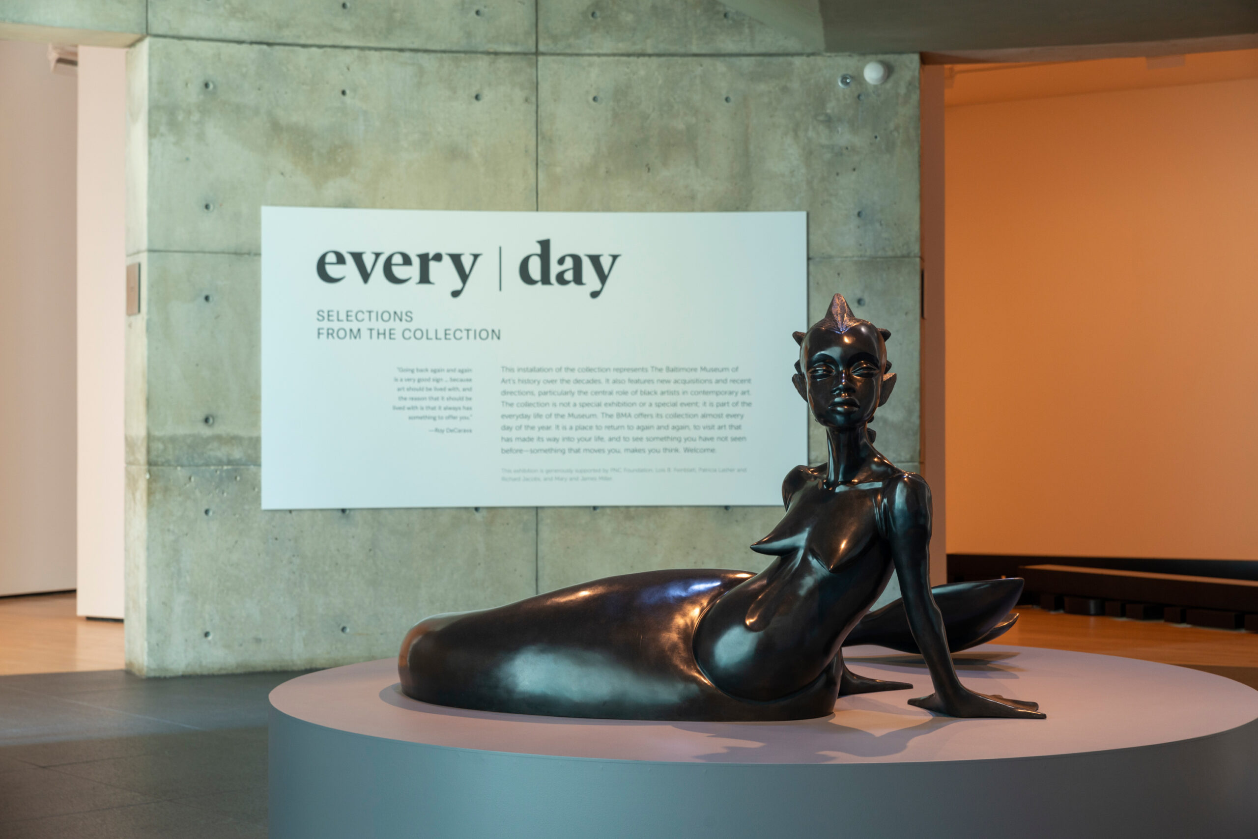 Every Day: Selections from the Collection at the Baltimore Museum of Art, July 2019. Photo by Mitro Hood.