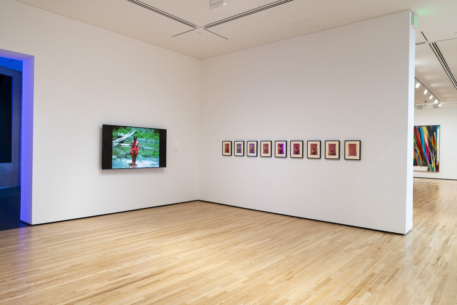 Installation view, Ana Mendieta: Blood Inside Outside. Photo by Mitro Hood