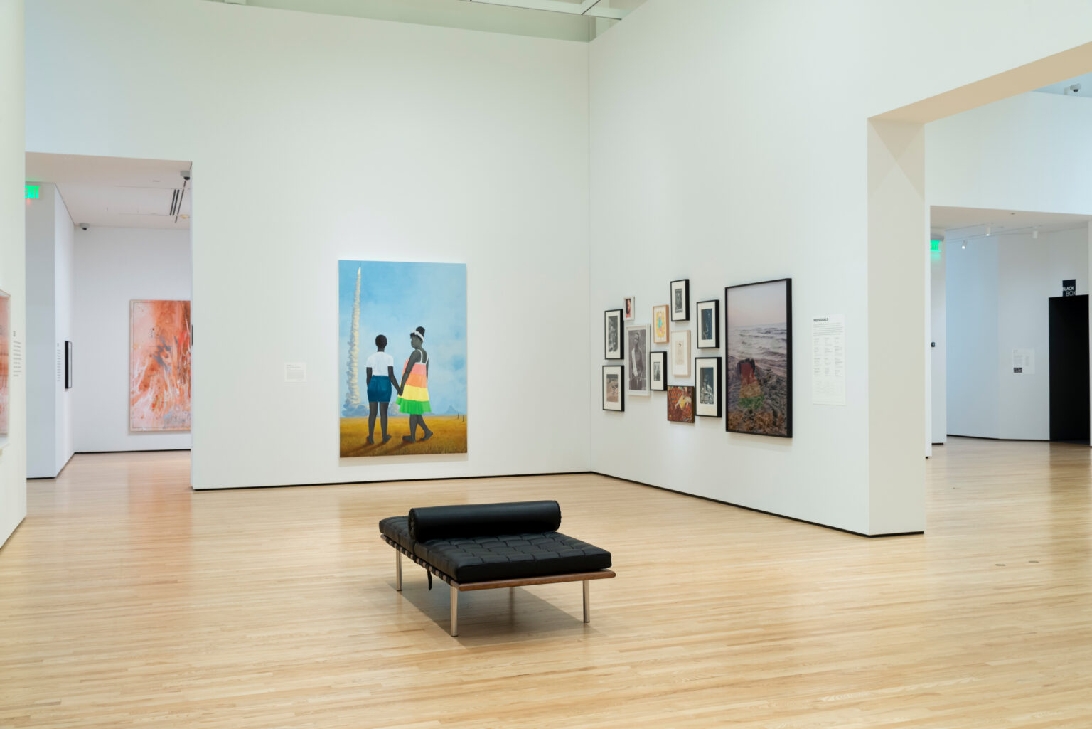 Installation view, Every Day: Selections from the Collection. Photo by Mitro Hood
