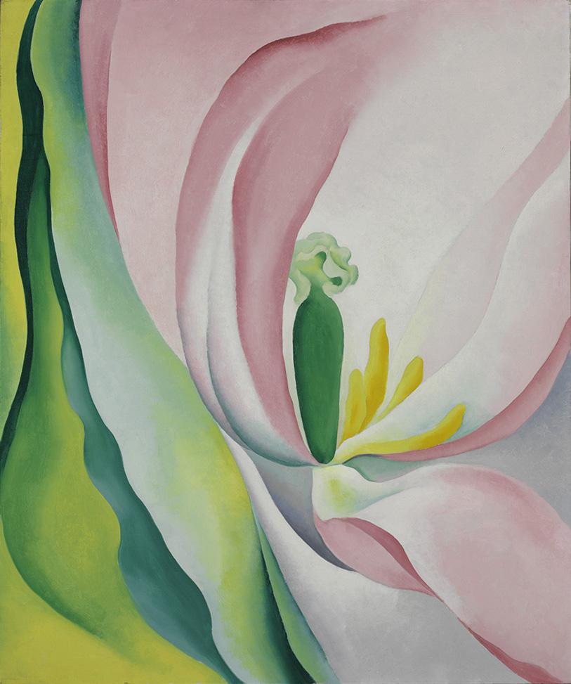 Georgia O'Keeffe. Pink Tulip. 1926